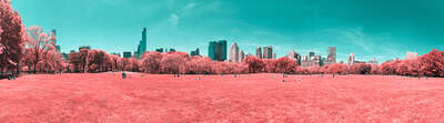 Infrared NYC VI by Paolo Pettigiani