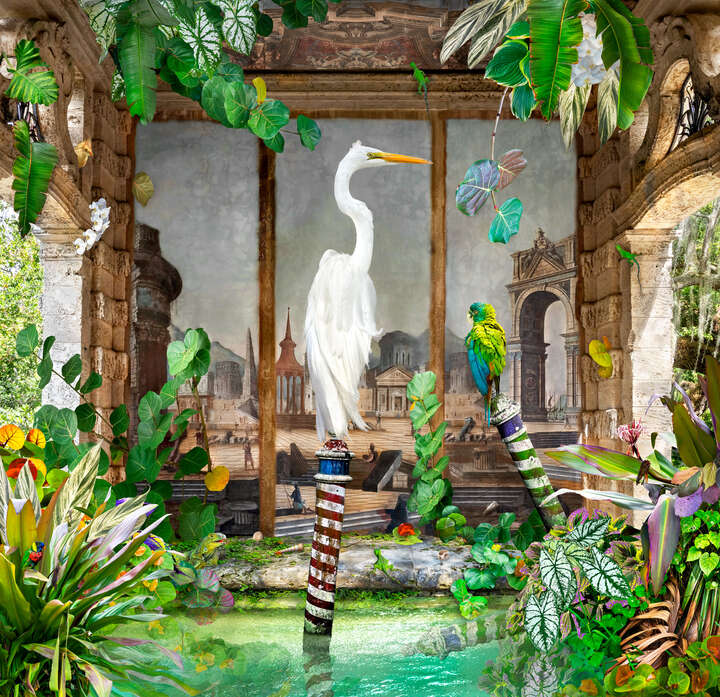 An Egret Contemplates: Truly I am the Center of the World von Pat Swain