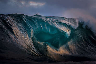Curated Nature Photography: Oil by Ray Collins