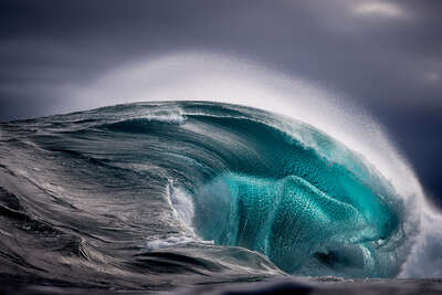 famous photographers of the 20th century: Ray Collins: Sea Monster by Ray Collins