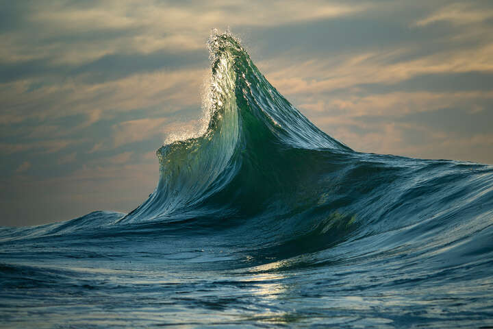 Apex de Ray Collins