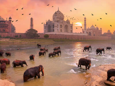 water art photography:  Taj Mahal Elephants by Robert Jahns