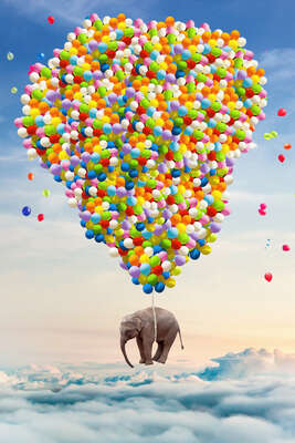 animal wall art:  Elephant above the Clouds by Robert Jahns