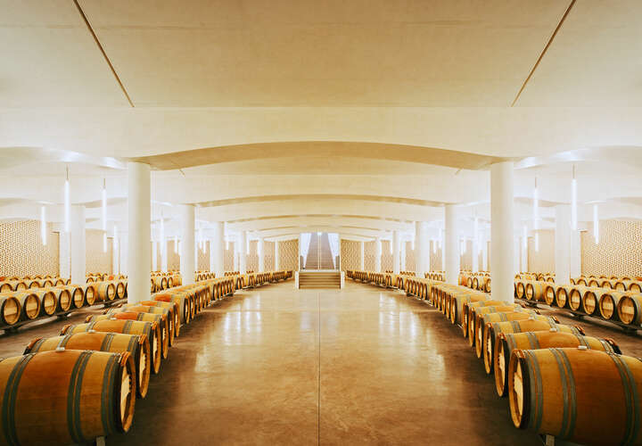 Chateau Cheval Blanc, Bordeaux, France de Rafael Neff