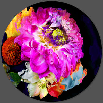 "Floral Art Prints: Digital Photo Editing ""bloom v7.2"" by René Twigge"