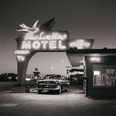 Blue Swallow Motel by Shannon Richardson