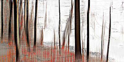Abstract Landscape Prints: wood_0870 by Sabine Wild