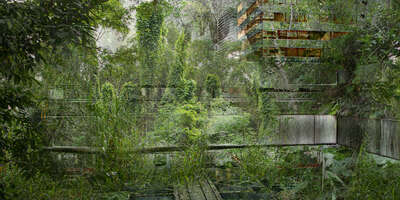 forest photographers: Sabine Wild: Green City I by Sabine Wild