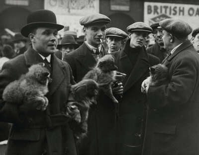 Vintage Photography: Hundemarkt in London by Martin Munkacsi